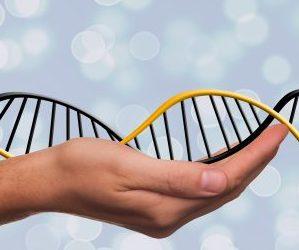 Liberación Genética